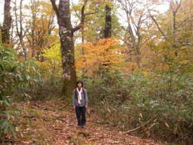 20081102-紅葉の若杉峠は最高でした.JPG