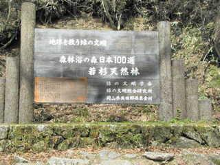 20100509-若杉峠.JPG